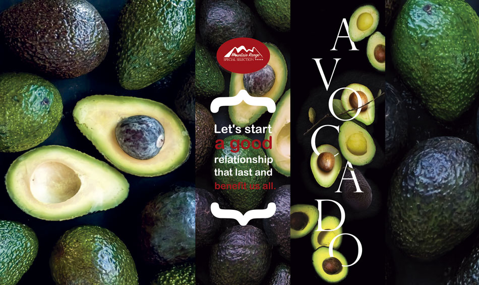avocado-web2